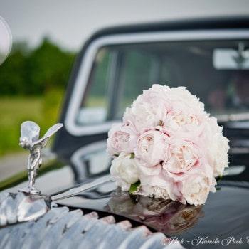 dekoracje ślubne różowe piwonie